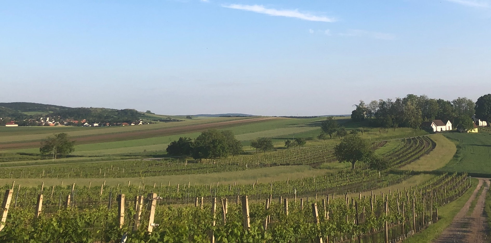 Die Niederösterreichische Wohnbauförderung 2019